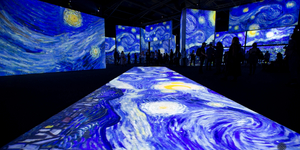 BWW Review: VAN GOGH is ALIVE at Stanley Marketplace Photo