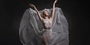 Indianapolis Ballet Announces Full 2021-22 Season Lineup Photo