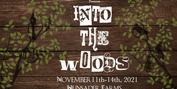 New Jump Encore! Announces Full Cast And Crew For INTO THE WOODS At Hunsader Farms Photo