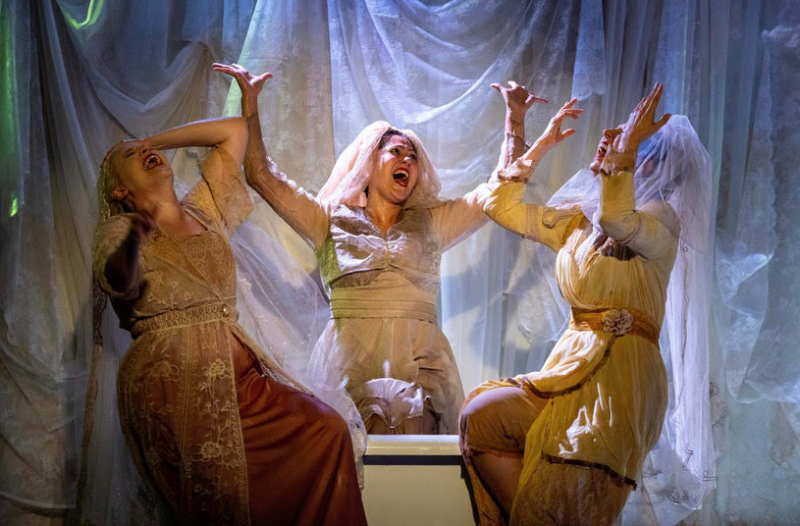 BWW Review: THE DROWNING GIRLS at OnStage Playhouse
