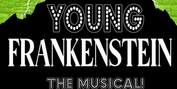 Vintage Theatre Productions Presents YOUNG FRANKENSTEIN in Aurora Photo