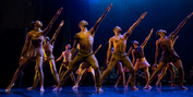 The Auditorium Theatre Presents Deeply Rooted Dance Theater, October 23 Photo