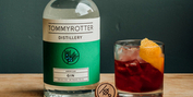 Celebrate NEGRONI WEEK with Gins from Across the Globe According to Experts and a Special  Photo