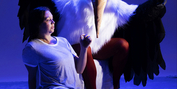 BWW Review: BABEL: A Challenging Work in Progress at Scoundrel And Scamp Photo