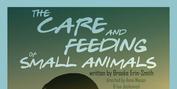 WYO Theater & Relative Theatrics Present THE CARE & FEEDING OF SMALL ANIMALS Photo