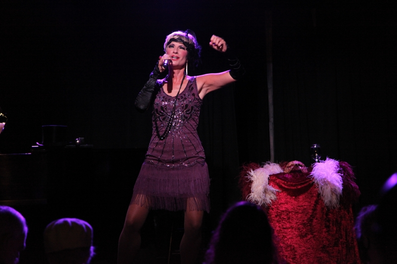 BWW Review: Adrienne Haan Lives Comfortably BETWEEN FIRE AND ICE at The Triad