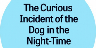 THE CURIOUS INCIDENT OF THE DOG IN THE NIGHT-TIME Comes to New Stage Theatre Next Year Photo