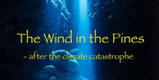 APNM to Present World Premiere Performances of Alice Shields' THE WIND IN THE PINES Photo