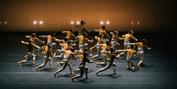 La Compañía Nacional De Danza Celebrará El Día Mundial Del Ballet Con Actividades Virtuale Photo