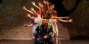 BWW Review: BEARS Roars to Life at the Citadel Theatre Photo