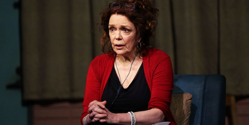 DANA H. and IS THIS A ROOM To Conclude Broadway Runs on November 13 & 14 Photo