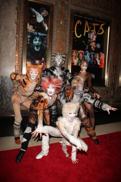 Photo Flash: Hardin, Devine, Roberts et al. Attend Opening Night of CATS at The Pantages