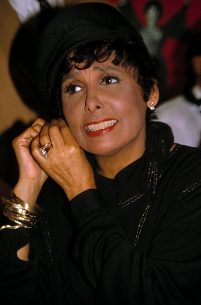 photo coverage  bww remembers lena horne