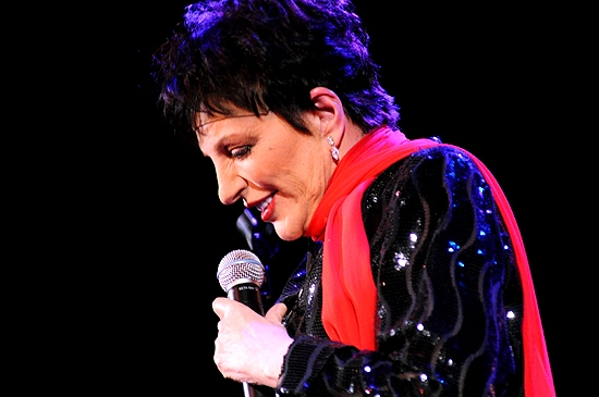 Photo Coverage: Liza Minnelli Returns to the Concert Stage!