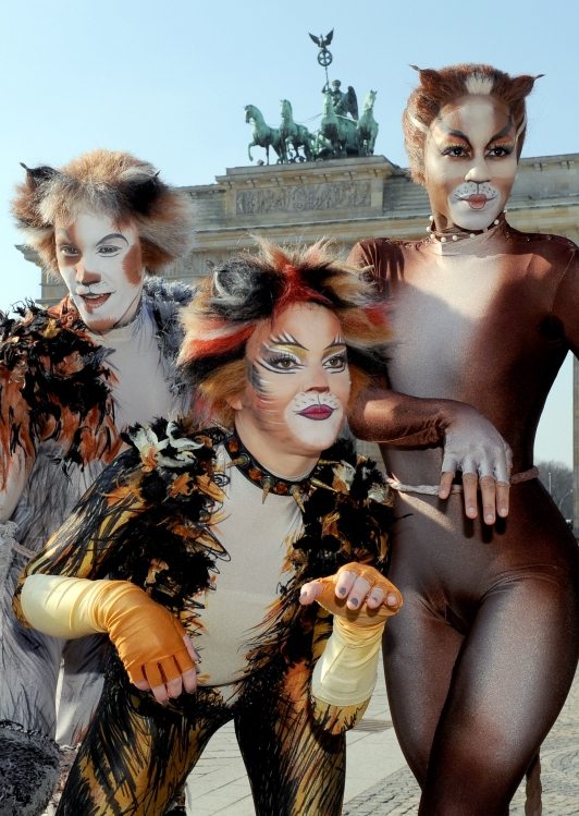 cast members from cats  hi-res photo