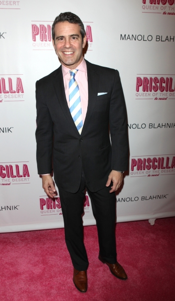 Photo Coverage: PRISCILLA QUEEN OF THE DESERT Red Carpet - Part 1
