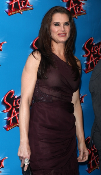 Photo Coverage: SISTER ACT Opening Night Red Carpet