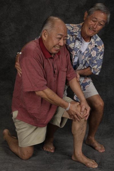 Dann Seki and Allan Y. Okubo