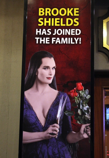 Photo Coverage: Brooke Shields Opens in THE ADDAMS FAMILY - Curtain Call!