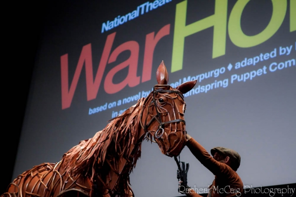 Photo Coverage: First Look at War Horse in Toronto