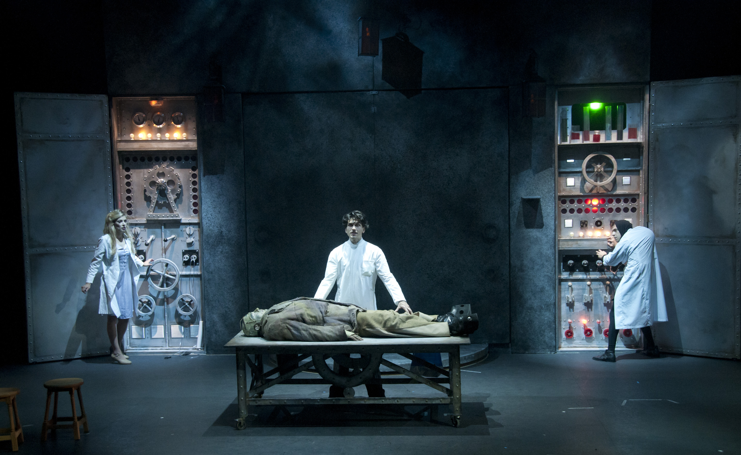 Aninimal Book: BWW Reviews: YOUNG FRANKENSTEIN Arrives in Paris!