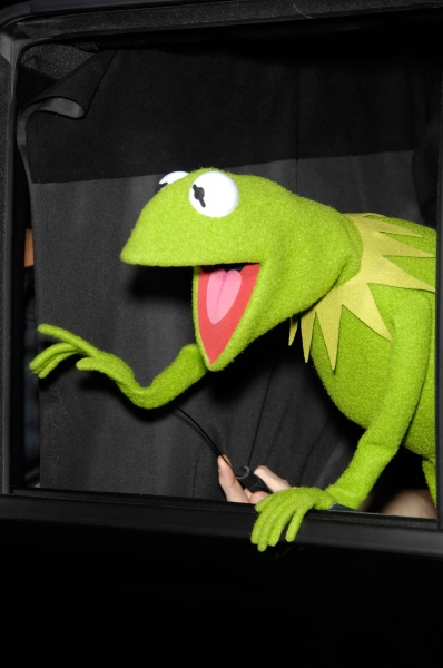 Kermit the Frog at Premiere of New MUPPETS Movie