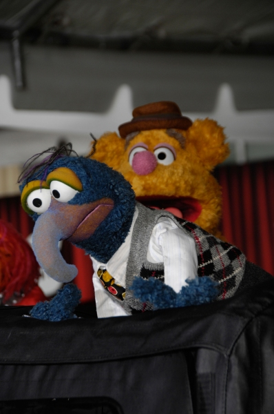 Gonzo and Fozzie Bear during the premiere of the new movie from Disney THE MUPPETS Photo