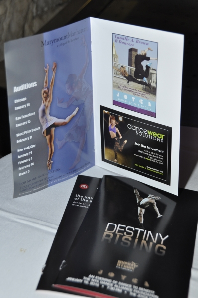 Photo Flash: NYCDAF's Destiny Rising Benefit