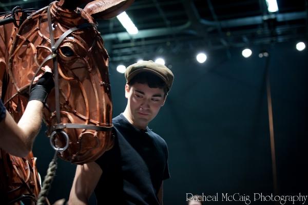 Photo Coverage: Sneak Peek at Toronto's WAR HORSE