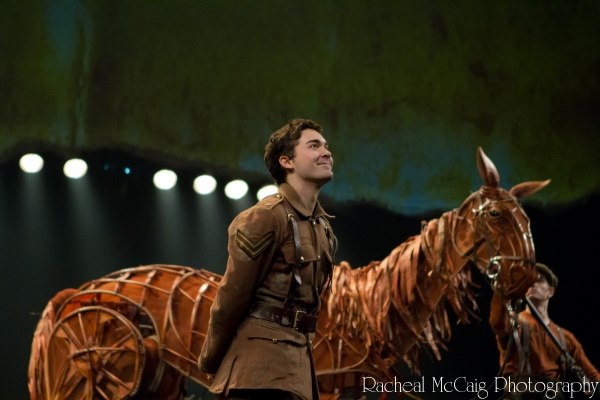 Alex Furber at WAR HORSE Opens in Toronto - All the Red Carpet Action!
