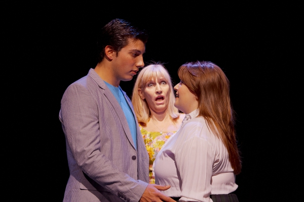 Ben Menahem of Plainsboro as the love interest, Link Larkin; Vicky Wyman of Monroe Township as the detestable Velma Von Tussle; and Kristen Kane of Plainsboro as Tracy Turnblad, the heroine with a passion for dancing.