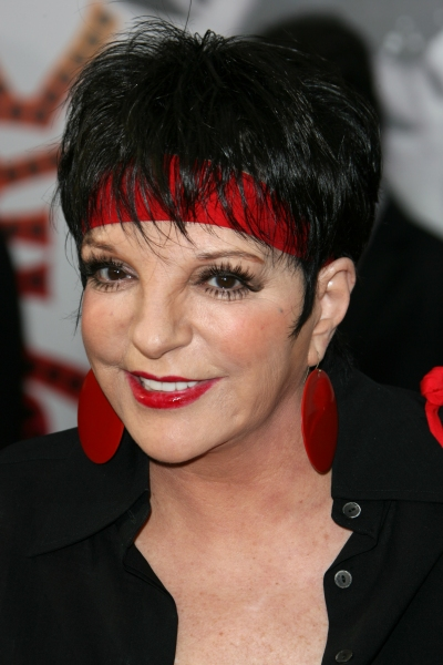 Photo Flash: Liza Minnelli & Co. At The CABARET 40th Anniversary Screening