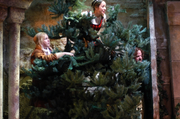 BWW Reviews:  Arvada Center's TWELFTH NIGHT or WHAT YOU WILL, a Comedy - Why So Serious?