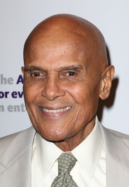Harry Belafonte at The Stars Come Out to Honor Jerry Stiller, Harry Belafonte & More at The Actor's Fund Gala