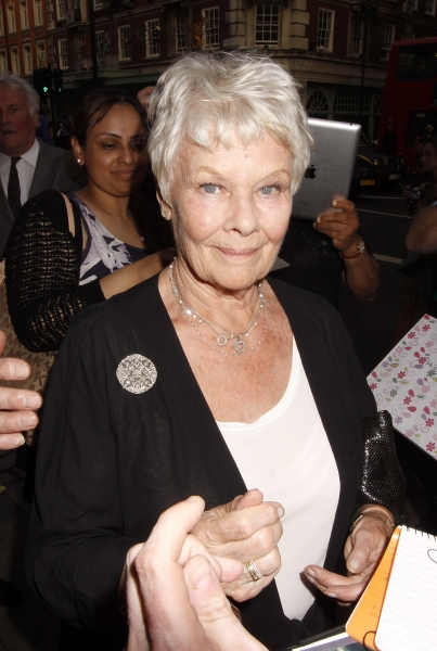 Judi Dench at Michael Crawford & More Attend Queen's Jubilee Arts Party