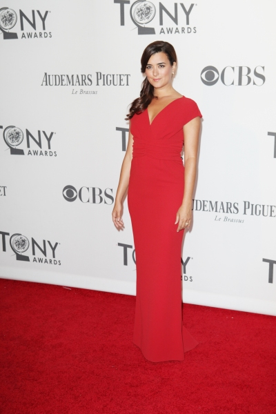 Photo Coverage: 2012 Tony Awards Red Carpet- Part 3!