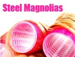 Stages Repertory Theatre Presents STEEL MAGNOLIAS, Now thru 8/19