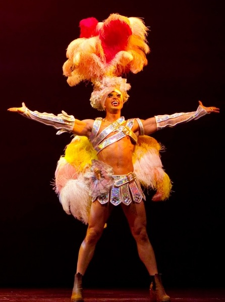 Flashback: PRISCILLA, QUEEN OF THE DESERT Takes Final Bow on Broadway, June 24