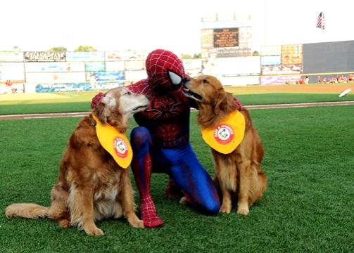 Photo Flash: SPIDER-MAN Throws First Pitch for Trenton Thunder
