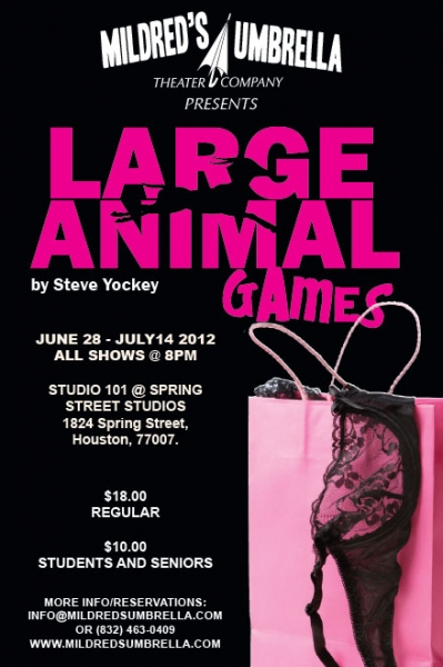 BWW Reviews: LARGE ANIMAL GAMES Is An Enjoyable Alternative to Houston's Theatre Norm