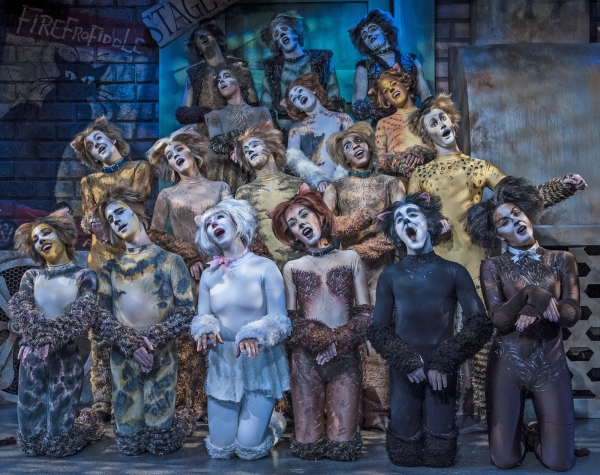 Photo Flash: Cortland Repertory Theatre's CATS Opens Tonight, 7/11