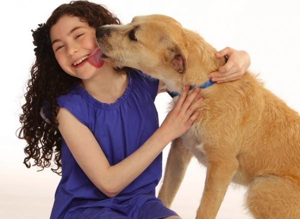 Photo Flash: Meet ANNIE's 'Sandy,' Shelter Dog Sunny!