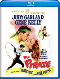 The Pirate Cover